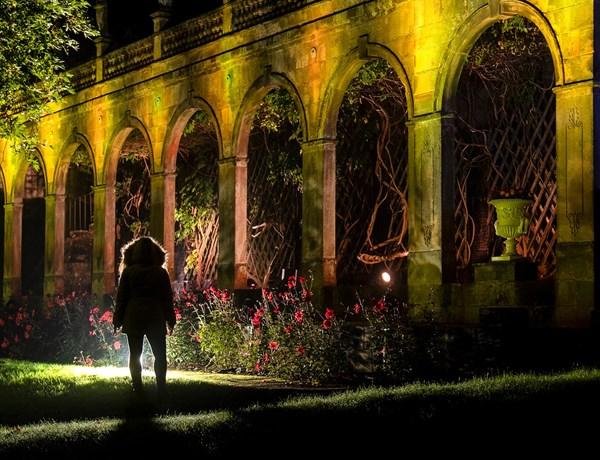 Garden Lights Walk