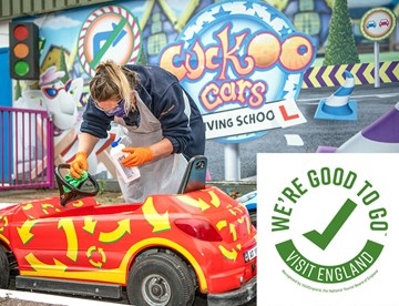 Goodtogo Cuckoo Cars