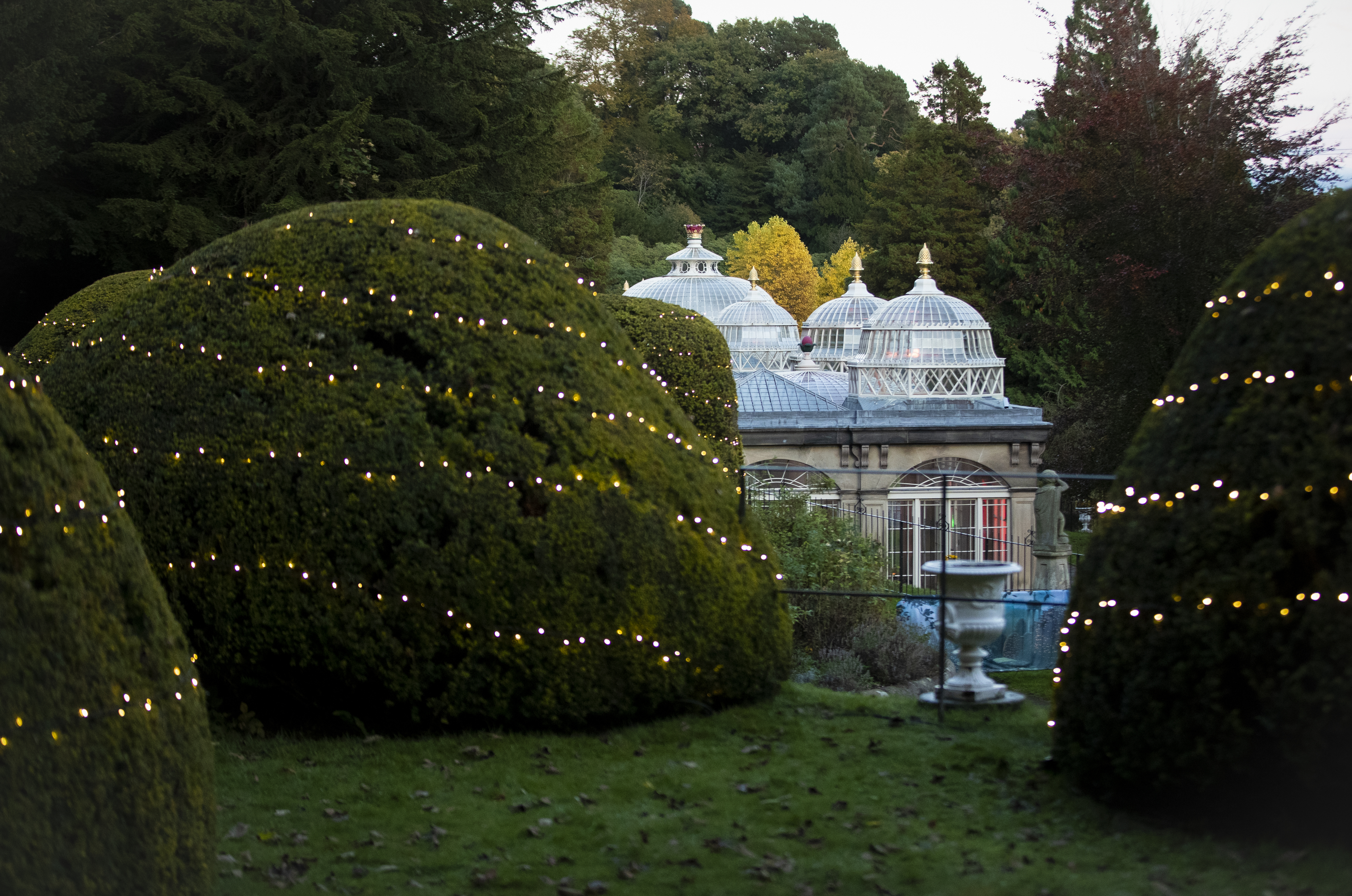 The historic conservatory in the illuminated Alton Towers Gardens